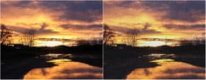 collage of natural and distorted