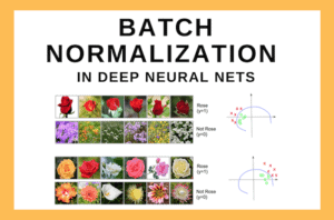 Batch Normalization In Deep Neural Nets