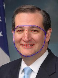 Convex Hull for Face Swap