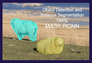 Object Detection and Instance Segmentation using Mask-RCNN
