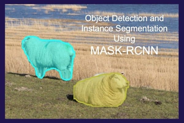 Instance Segmentation using Mask R-CNN