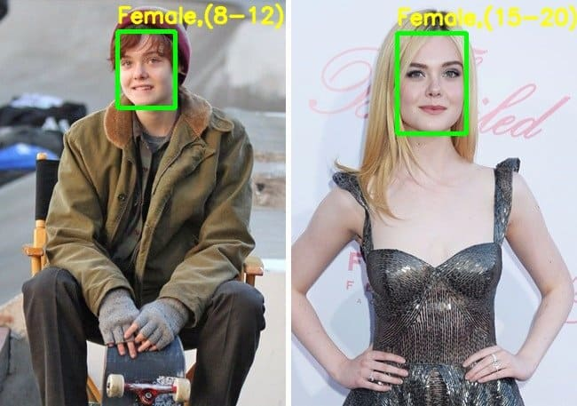 Demo output – Elle Fanning in the movie 3 Generations – gender correctly identified.