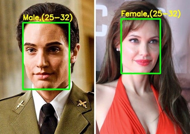 Demo output – Angelina Jolie in the movie salt – gender incorrectly identified.