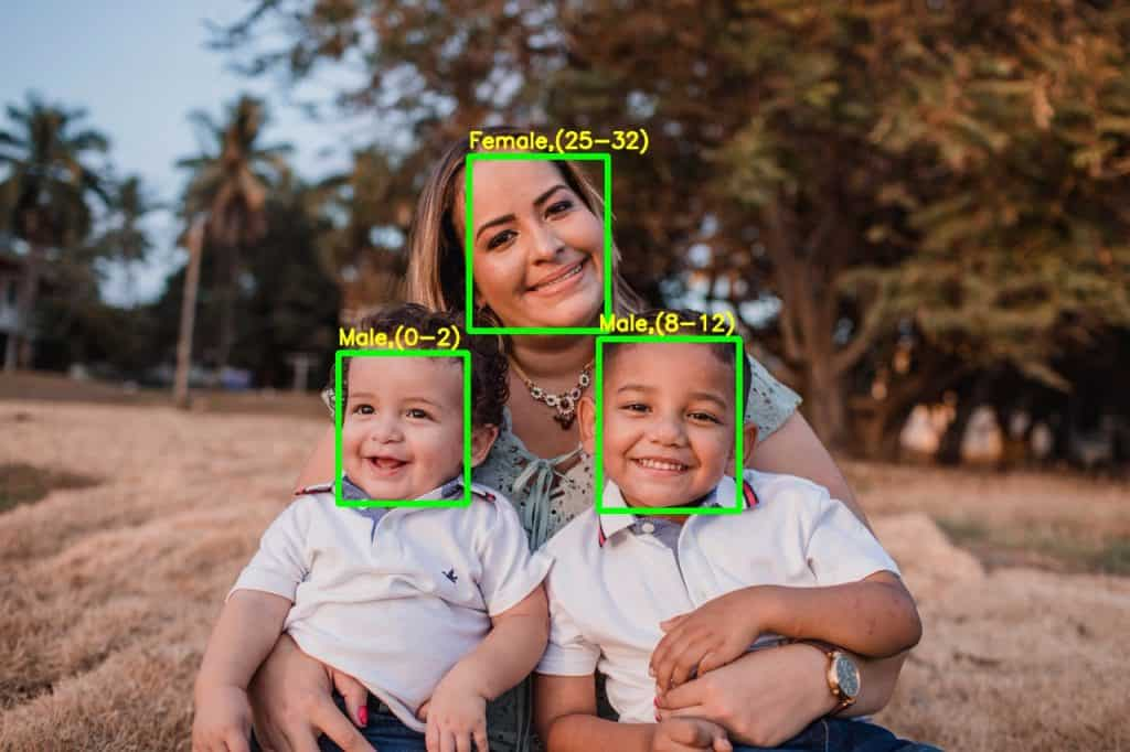Demo output – mother and 2 children – gender and age group identified is overlaid.