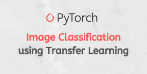 Image Classification Using Transfer Learning in PyTorch