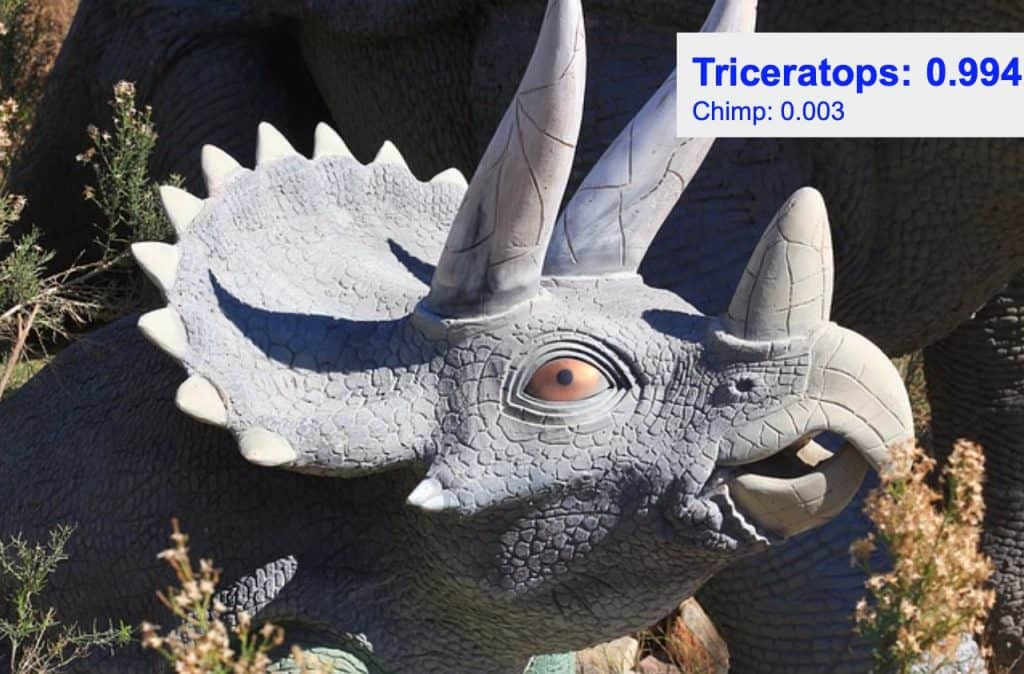 Image classification - triceratops