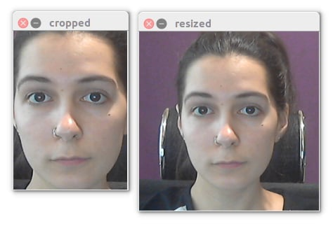 Detected face and resized face used as input to the landmark net.