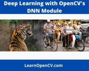 Examples of results - Deep Learning with OpenCV's DNN Module