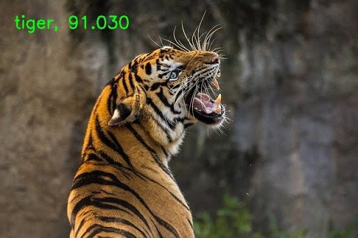 DenseNet121 correctly predicting the image as that of a tiger.