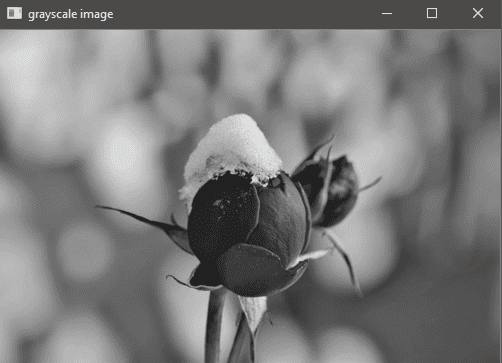 Output of the imshow() function. A grayscale image is shown as per options specified in code.